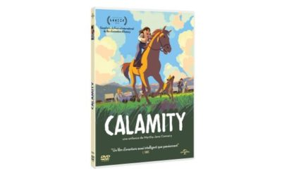 DVD Calamity